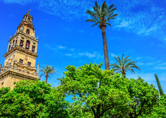 Bell Tower of the Mezquita - Cathedral of Córdoba Spain (mbell1975) Tags: old our españa tree tower church abbey lady de town grande spain europe catholic cathedral bell roman dom great kathedrale iglesia kirche mosque palm historic belltower chiesa espana spanish igreja moorish di cordoba mezquita andalusia altstadt córdoba kerk eglise cordova assumption español moschea kirke moschee cordoue mosquéecathédrale mosque–cathedral mezquita–catedral قُرطبة‎ qurṭubah