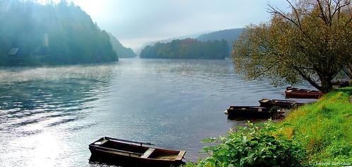 Herbstmorgen an der Moldau bei der Klosterinsel St. Kilian