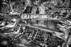 Cascading Waterfall on the San Antonio Riverwalk (dfikar1) Tags: city blackandwhite plants water pool monochrome horizontal sanantonio river garden canal waterfall stream texas walk smooth flowing cascade riverwalk