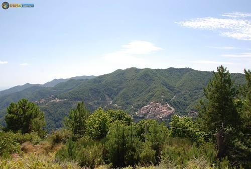 CZ-Sorbo San Basile- Il centro abitato tra i boschi 5824_L