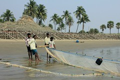 FISHERMEN (Munisch) Tags: morning travel trees light sea india fish color net beach canon geotagged photography eos rebel photo fishing sand focus asia fishermen working 1855mm digha stillphotography 550d t2i
