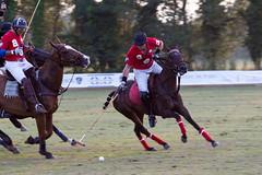 Julian Joailliers vs. Hotel de Paris (Claude Schildknecht) Tags: horse cheval pferde polo pferd chevaux gassin
