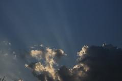 Bergenhusener Morgenhimmel im August; Bergenhusen, Stapelholm (9) (Chironius) Tags: morning sky clouds sunrise germany deutschland dawn nuvole alba himmel wolke wolken amanecer ciel cielo alemania dmmerung nuage sonnenaufgang allemagne morgen nube hemel germania ochtend schleswigholstein matin  morgens zonsopgang mattina gkyz aube ogie pomie  morgendmmerung morgengrauen  niemcy dageraad  bergenhusen   stapelholm  pomienie szlezwigholsztyn