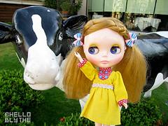 Blythe Hello Harvest  (HELLO BLYTHE !~) Tags: hello harvest blythe