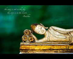 Peaceful (.krish.Tipirneni.) Tags: old green museum relax thailand 50mm gold nikon peace heart bangkok buddha ivory peaceful hyderabad nationalmuseum hpc d80 rktobjects krishtipirneni rangakrishnatipirneni