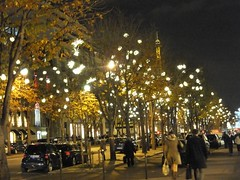 Avenue Montaigne (erintheredmc) Tags: christmas travel november trees decorations holiday paris france tourism lights franklin europe european fuji metro market erin champs tourist roosevelt adventure stop finepix avenue elysees fdr mccormack delano montaigne 2013 f550exr uploaded:by=flickrmobile flickriosapp:filter=nofilter