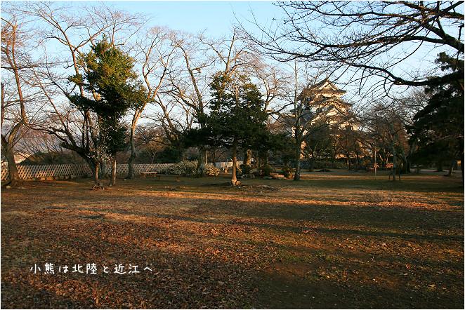 彥根城-53