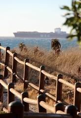 wanderlust (Michael from Austria) Tags: ocean africa cat southafrica ship dunes atlantic containership südafrika milnerton düne westerncape woodbridgeisland westkap