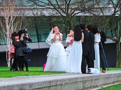 Wedding Shoot (garryknight) Tags: street camera wedding london photography groom bride nikon photographer southbank bridesmaid lightroom d5100 perfectphotosuite