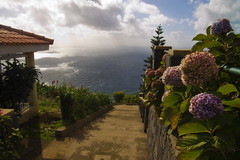 Going down? - Prazeres, Madeira (konceptsketcher) Tags: ocean travel flowers sea portugal beautiful stairs landscape island photography view path sunny insel madeira vereda calheta 2013 pauldomar canon1100d konceptsketcher