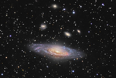 NGC 7331 and Beyond (www.linkobservatory.org) Tags: pegasus ngc galaxy spiralgalaxy