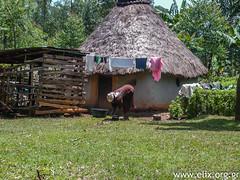Kenya - CIVS-STV04-2013 UKWALA RURAL DEVELOPMENT CENTRE (UCRDC) - LOUKAIDI Angeliki (ΕΛΙΞ / ELIX) Tags: kenya workcamp 2013 κένυα elixconservationvolunteersgreece ελιξπρογραμματαεθελοντικησεργασιασ civskenya