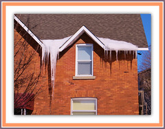 Winter Icicles (bigbrowneyez) Tags: windows roof winter house cold brick ice wet architecture grande casa dangerous long pointy branches sunny sharp formation punta huge inverno alto freddo icicles ghiaccio bello pericoloso ghiaccioli wintericicles