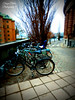 Let's bike together (Terezaki ✈) Tags: road trip travel blue light vacation holiday green colors photography photo europe day ride searchthebest sweden stockholm bikes creation scandinavia pictureperfect 2014 naturesfinest 50faves anawesomeshot flickrdiamond theperfectphotographer