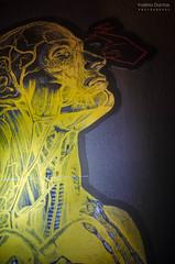 Every breath you take (Valéria Dantas) Tags: inspiration art 50mm nikon arte body think human mind vens inspiração d5100