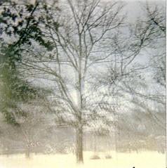 Oberlin I (Grace B. H.) Tags: park trees winter ohio snow building tree 120 film architecture square lomo lomography snowy 120film diana dianaf wintertrees oberlin sciencecenter wintertree northeastohio oberlincollege tappansquare ohiowinter oberlinwinter oberlinsciencecenter