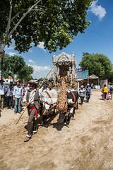 AE5D0743 (alonsoesparterofoto) Tags: caballo alma imagenes alonso rocio ermita bombo flamenca buey flauta gitana romeria campero botos tamboril bueyes rociero carriola simpecado tamborilero espartero rociera gibraleon sinpecado alonsoespartero