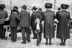 Jerusalem, Israel (gstads) Tags: orthodox jew jews jewish jerusalem israel wailingwall wall chassidim chassidic judaism middleeast monochrome bw blackandwhite noiretblanc moyenorient religion religious boy shtreimel fur hat furhat hassidic hasidic shabbat people chasidim chasidic chasidism hasidism orthodoxjew orthodoxjews orthodoxjudaism headgear sidelocks sidecurls payot peyot peot locks sideburns bnw