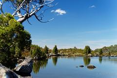 20170301-22-Pencil pine reflection (Roger T Wong) Tags: australia greatpinetier np nationalpark sel70300g sony70300 sonya7ii sonyalpha7ii sonyfe70300mmf2556goss sonyilce7m2 tasmania wha wallsofjerusalem worldheritagearea bushwalk camp hike pencilpines pool reflections tarn trektramp walk water