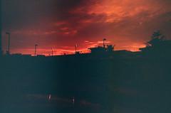 Guam, US / Redscale / Lomo LC-A+