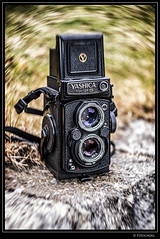 "Yashica Mat 124 G • <a style=""font-size:0.8em;"" href=""http://www.flickr.com/photos/58574596@N06/33264999345/"" target=""_blank"">View on Flickr</a>"