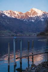 Lake and mountains (Thomas Mülchi) Tags: lakewalenstadt cantonofstgallen switzerland 2017 churfirstenmountainrange lake mountains bluesky snow boatbridge reflections eveninglight quarten sanktgallen ch