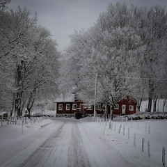 Black and white and... red. (KorsaCaro) Tags: road winter sweden forest redhouse