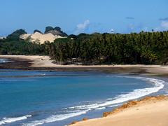 Coqueiral (Sereiazinha Si) Tags: natal coqueiral coqueiro cocosnucifera praia beach duna areia paisagem landscape mar sea azul blue riograndedonorte brasil brazil paraíso paradise