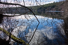 Mountain Lake 1 (Ron Rothbart) Tags: moranstatepark mountainlake orcasisland sanjuanislands washington lake reflection water