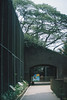 F1000018_lr (chi.ilpleut) Tags: singapore 2017 myday march outdoor outing film ilovefilms shootfilm kodakfilm expiredfilm jurongbirdpark birds seeing greenery ilovegreen analogue analog track grain
