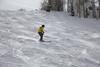2017-00479 (kjhbirdman) Tags: activities businesspeople colorado lumsden people places snowskiing steamboatsprings unitedstates vascularsurgerycolleagues