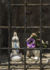Free Marie! (SilentMatt) Tags: flower fleur rose marie prayer religion icon icone prire