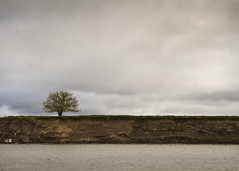 Lone tree on the Missouri (sstukel) Tags: southdakota missouririver