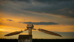 Reach (Jchales.co.uk) Tags: wood sunset sky orange sun jason clouds toy grey for fly wings sundown dusk character feathers feather reach essex chelmsford hales danbo canonef50mmf14usm wwwjchalescouk jchalescouk