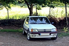 14-6-2013 (Monito Efervescente One) Tags: gti peugeot 205