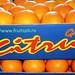 апельсины оптом