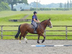 17 Jun 2013 - Polework at Pontispool (bobcox on flickr) Tags: horse equestrian