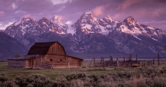 Grand Teton National Park 2013 (Gord McKenna) Tags: park usa mountain mountains dan june barn america sunrise rockies photography us unitedstates hole united rocky grand moose row jackson course national american workshop ballard mormon states wyoming teton gord wy d800 mckenna gtnp 2013 gordmckenna