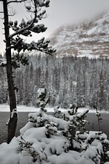Mirror Lake (kylesipple) Tags: christmas city winter panorama mountain lake snow fall film nature forest 35mm landscape photography mirror utah cabin woods highway uinta uintas pentax k1000 grain salt bald scenic meadows panoramic 150 mount national slc baldy moosehead byway