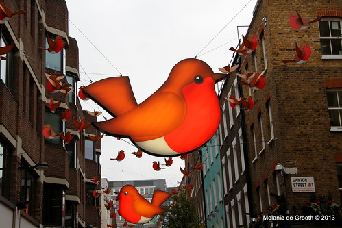 Robin Christmas Lights 2