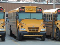 Zeeland Public Schools (Nedlit983) Tags: blue school bus bird vision