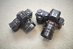 Brothers -- Sony A7 and Olympus E-M5 (Col Jung) Tags: leica lens 50mm sony gear olympus cameras 12mm summilux zuiko a7 omd lenses cameraporn lensporn newgear em5 mirrorless sonya7 vision:outdoor=0833