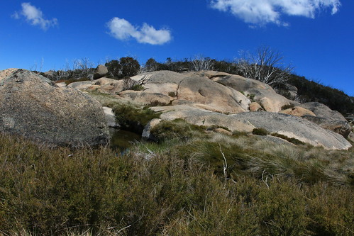 Mt Buffalo walk - layers of stone, pools, grasses, wildflowers....