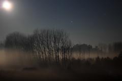 Noite (Pedro Mano) Tags: moon night canon eos 50mm lua noite 18 600d