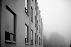 Foggy Evening (haylee noelle) Tags: blackandwhite window fog outdoor fade depth