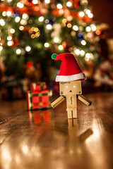 Merry Christmas Love Danbo (Chaos2k) Tags: christmas trees ontario canada lights dof bokeh northbay danbo 2013 canon24105l revoltech danboard canon5dmarkii danbomini brianboudreau