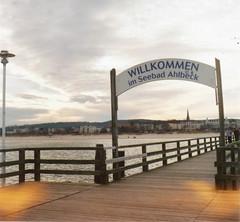 Usedom (tesatscad) Tags: balticsea ostsee usedom seebrücke ahlbeck seagull4a lomographycn400
