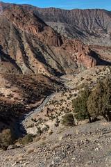 Atlas Gorge (Ryoushi no syokubutsuen) Tags: art sahara nature landscape desert arabic berber marocco marrakech magrib almagrib medrassa