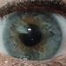 A Universe in an eye