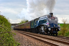 A4 60007 Sir Nigel Gresley passes Fairwood Junction on The Cathedral Express 10/04/14 (82A Photography) Tags: blue west coast br south cathedrals railway junction class company locomotive express sir a4 society nigel whistle exhaust chime westbury the wessex fairwood nymr 462 gresley 60007 kilechap